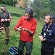 PIA Permakultur-Akademie im Alpenraum