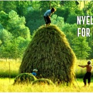 2nd Nyéléni Europe Forum for Food Sovereignty – the biggest ever convergence of Pan-European food sovereignty movements.