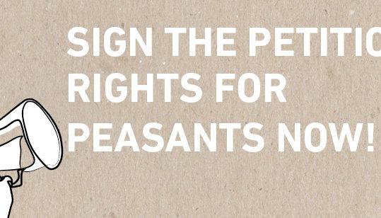 Krepitev človekovih pravic pridelovalcev